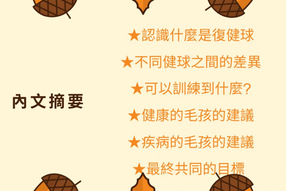 甜甜圈瑜珈球 PODCAST 寵物