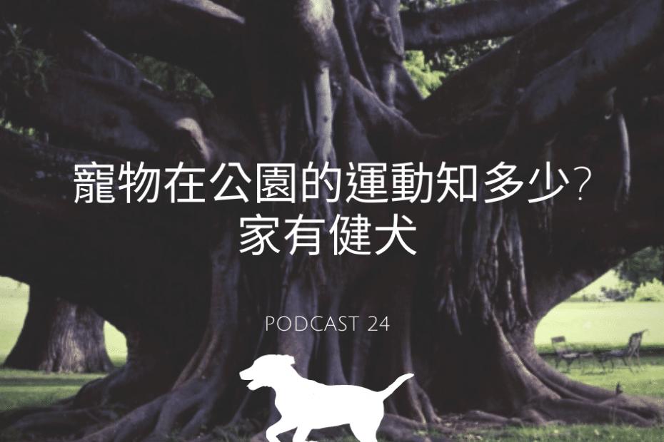 寵物公園運動